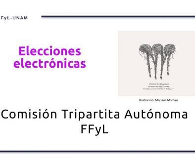 elecciones-electronicas